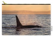 Orca At Sunset Carry-all Pouch