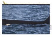 Orca Orcinus Orca Surfacing Showing Carry-all Pouch by Matthias Breiter