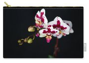 Orchid Flowers Against Black Background Carry-all Pouch