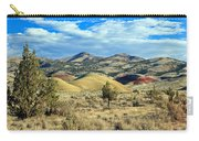 Oregons Painted Hills Carry-all Pouch