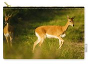 Oribi Two Carry-all Pouch