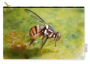 Oriental Fruit Fly Laying Eggs Carry-all Pouch
