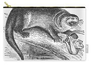 Otter, 1873 Carry-all Pouch