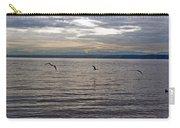 Owen Beach Carry-all Pouch