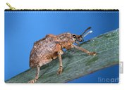 Oxyops Vitiosa Leaf Weevil On Melaleuca Carry-all Pouch