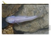 Ozark Blind Cavefish Carry-all Pouch