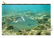 Pacific Chub 1080113.jpg Carry-all Pouch