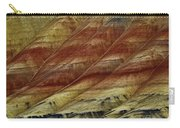 Painted Hills Lines Carry-all Pouch
