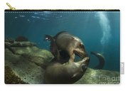 Pair Of Playful Sea Lions, La Paz Carry-all Pouch by Todd Winner