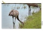 Pair Of Sandhills At The Marsh Carry-all Pouch