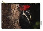 Pale-billed Woodpecker Carry-all Pouch