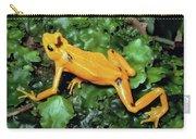 Panamanian Golden Frog Atelopus Zeteki Carry-all Pouch