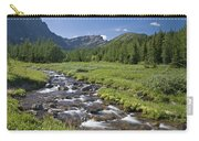 Panorama Ridge, Banff National Park Carry-all Pouch