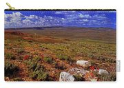 Panoramic View Of Fossil Butte Nm Valley Carry-all Pouch
