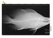 Panther Grouper X-ray Carry-all Pouch