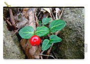 Partridge Berry Berry - Mitchella Repens Carry-all Pouch