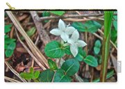 Partridge Berry Flower - Mitchella Repens Carry-all Pouch