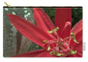 Passion Flower Blossom Costa Rica Carry-all Pouch