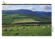 Pastoral Scene Near Anascual, Dingle Carry-all Pouch