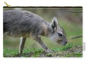 Patagonian Cavy Youngin Carry-all Pouch