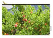 Peaches On Tree Carry-all Pouch by Elena Elisseeva