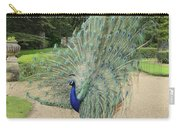 Peacock Glory Carry-all Pouch