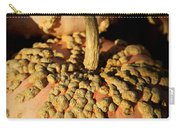 Peanut Pumpkins Carry-all Pouch by Karen Wiles