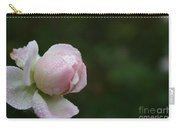 Pearlized Carry-all Pouch