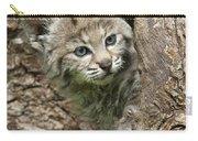 Peeking Out - Bobcat Kitten Carry-all Pouch