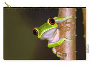 Peepers Carry-all Pouch