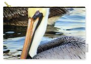 Pelican Pete Carry-all Pouch by Karen Wiles