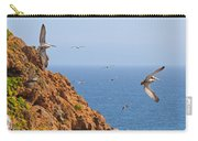 Pelicans Off The Point Carry-all Pouch