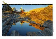 Pemaquid Point Reflection 2 Carry-all Pouch