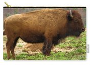Pennsylvania Bison Carry-all Pouch