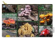 Pennsylvania Mushrooms Collage 2 Carry-all Pouch