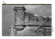 Perched On History Carry-all Pouch