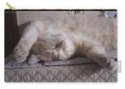 Percy Cat Sleep Stylist Carry-all Pouch
