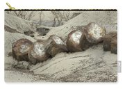 Petrified Forest 1 Carry-all Pouch