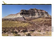 Petrified Forest Badlands Carry-all Pouch