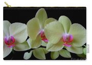 Phalaenopsis Fuller's Sunset Orchid No 1 Carry-all Pouch