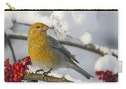 Pine Grosbeak Pinicola Enucleator Carry-all Pouch