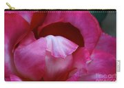 Pink Silk Carry-all Pouch