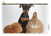 Pinscher Puppy With Rabbit And Guinea Carry-all Pouch