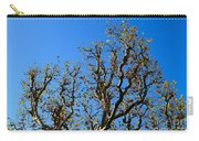Plane Tree In Autumn Carry-all Pouch