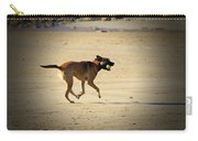 Playing Ball On The Beach  Carry-all Pouch