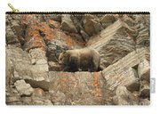Playing Mountain Goat Carry-all Pouch