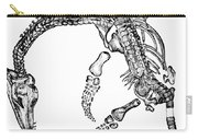 Plesiosaurus Carry-all Pouch by Science Source