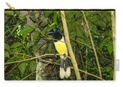 Plush-crested Jay Carry-all Pouch
