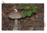 Point Lobos Park  Carry-all Pouch