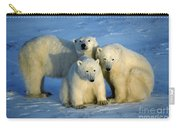 Polar Bear With Cubs Carry-all Pouch